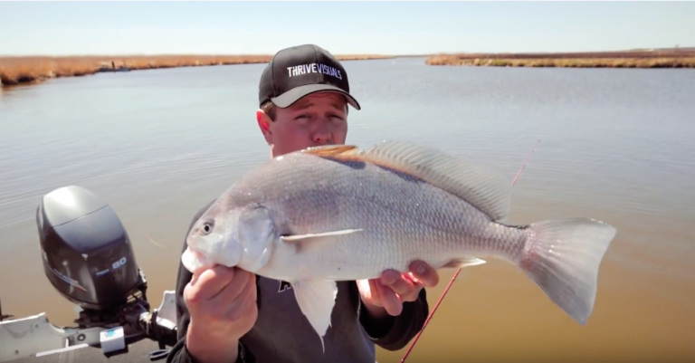 fishing for freshwater drum