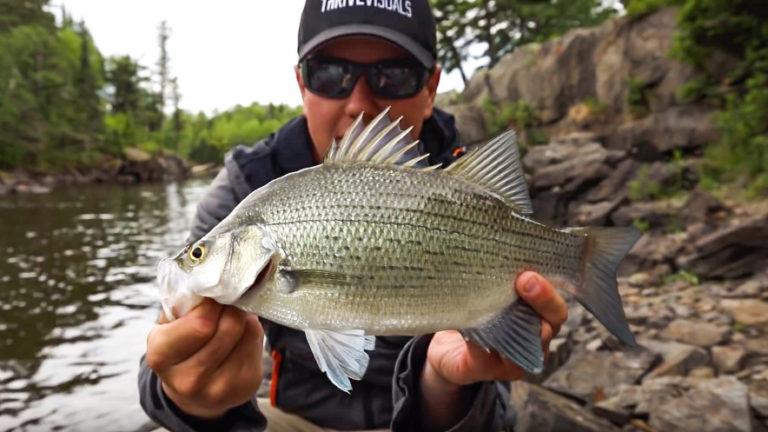 Manitoba shore fishing