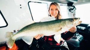 Lake Winnipeg walleye